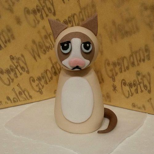 Grumpy Cat Cake Topper