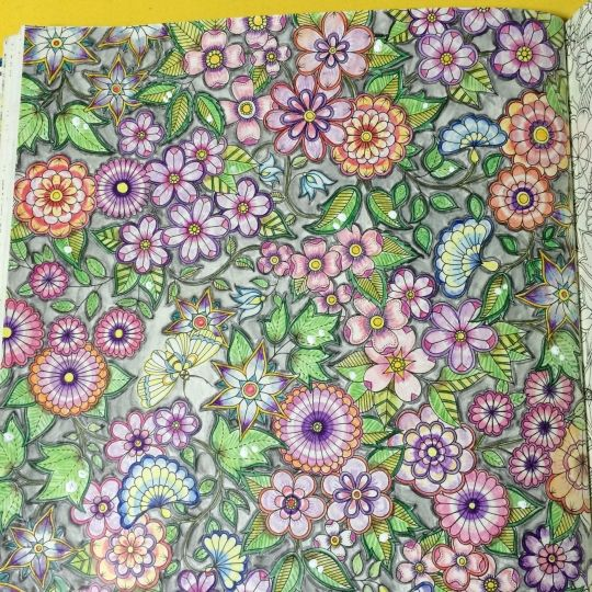 Fresh Adult Coloring Coloring Book Colouring Johanna Basford Paintings