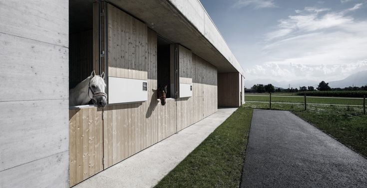 Gallery of Griss Equine Veterinary Practice / marte.marte architects - 13