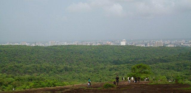 things to do in mumbai Sanjay Gandhi National Park