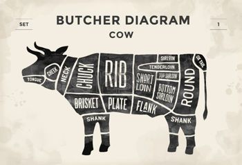 beef cuts chart: Cut of beef set. Poster Butcher diagram - Cow. Vintage typographic hand-drawn. Vector illustration Illustration