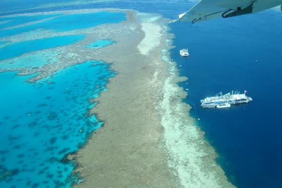 Great Barrier Reef, Whitsundays QLD