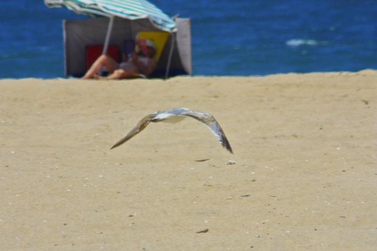 @Praia dos Pescadores, Espinho