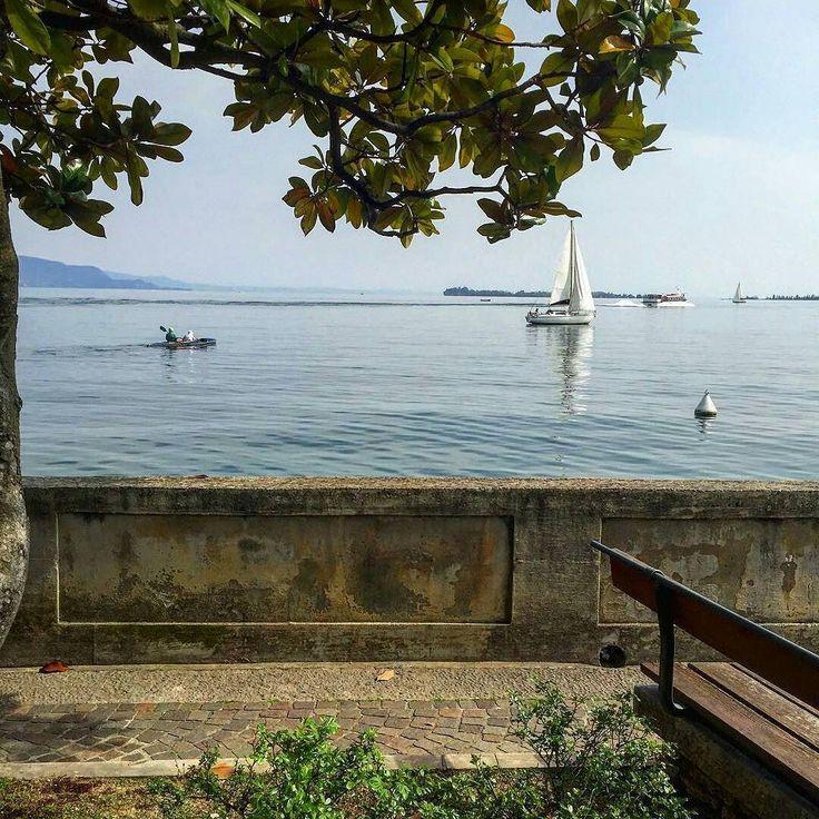 The peace of the lake  Lake Garda Salò  repost from @fio_86 - -  #garda #lakegarda #lagofigarda #lago #lake #pace #peace #salò #lungolago #muretto #panchina #bench #barche #boats #sailboat #sailboats #sailing #vela #vele #albero #tree #orangetree #brescia #verona #lombardia #veneto #italia #italy #loveitaly #iloveitaly by tourism_in_italy