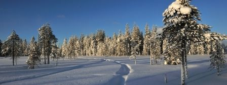 Saija Lodge in Winter, huskies, holiday packages, snowshoeing, cross-country skiing, snowmobiling