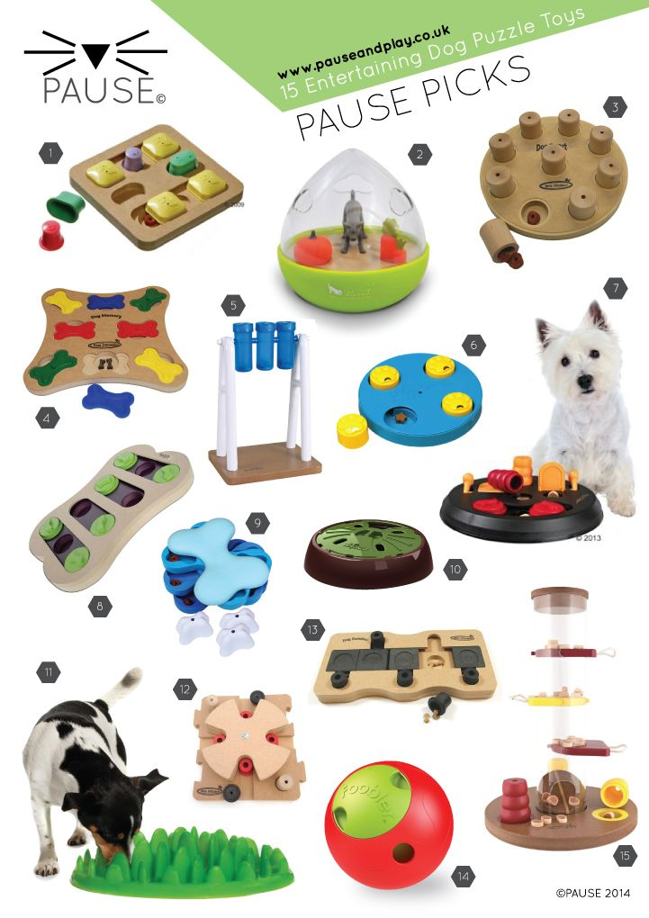 15 of the best dog puzzle toys to keep your dog entertain and mentally stimulated. These puzzles will give your dog hours of fun. http://buff.ly/1kwmce1