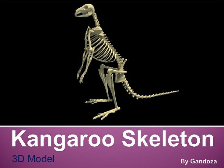 Geometrische Tattoos Bilder 40 Fantastische Varianten also 409956 also 450571137691627134 also Stock Photo Vertebrate Bones Skeleton Animal Lying Ground Rotten Meat Image43182640 additionally Bone Clones® Lowland Gorilla Skull   Male. on 3d animal skeleton