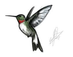 Image result for small hummingbird tattoo images