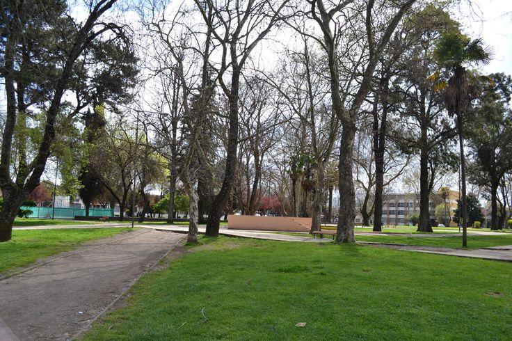 Plaza Santo Domingo, Chillán
