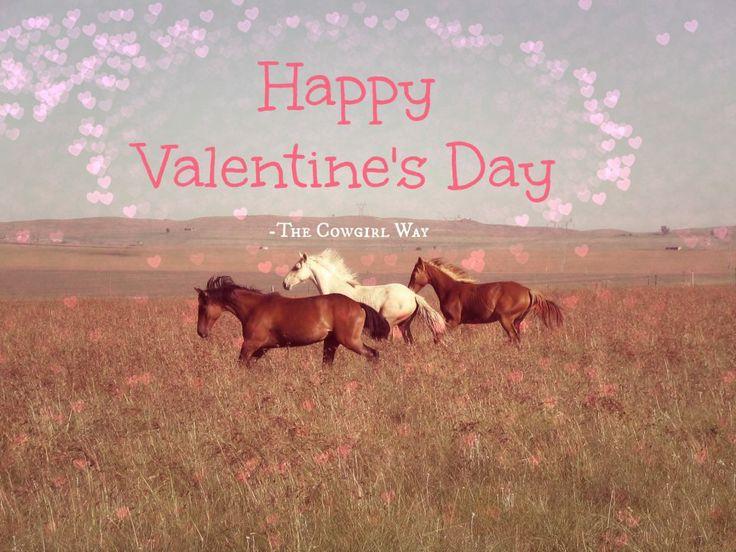 Happy Valentineu0027s Day! #horses