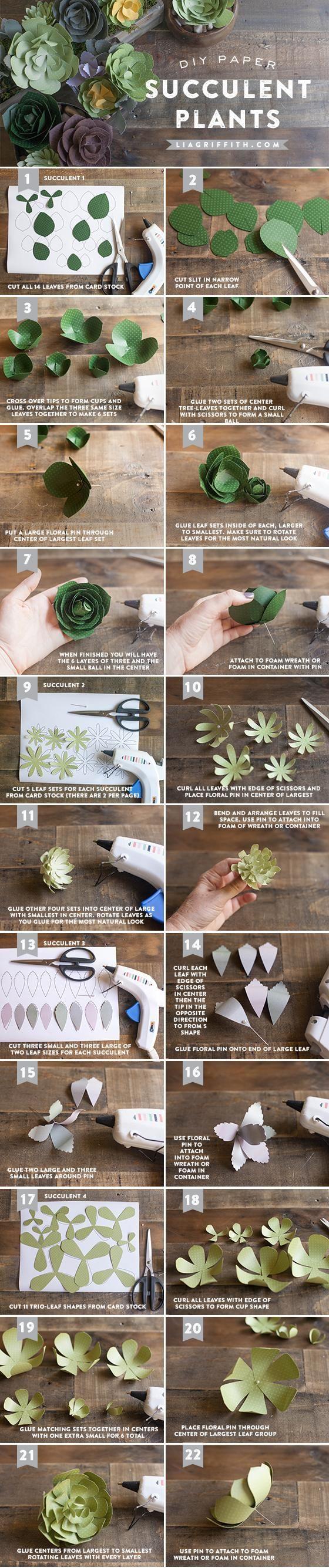 Paper Succulent Tutorial
