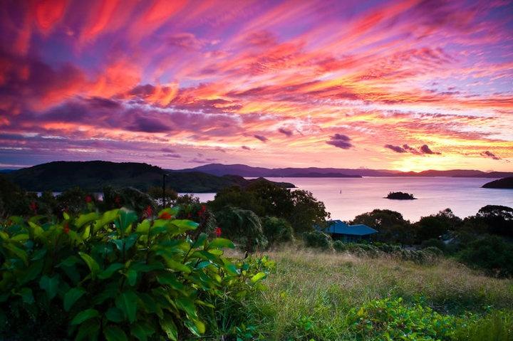 Hamilton Island, Queensland.
