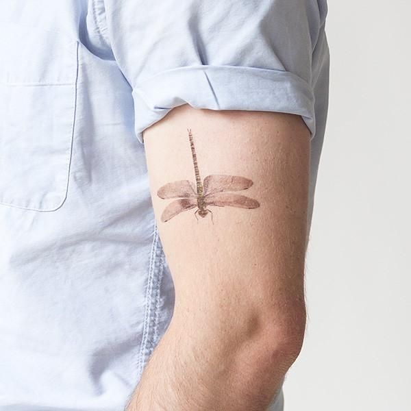 1000+ Ideas About Watercolor Dragonfly Tattoo On Pinterest