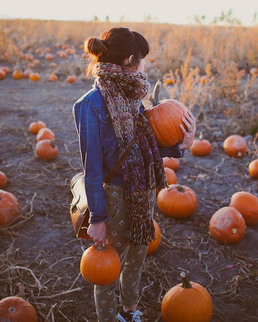 pumpkin patch 6 by Chalk White Arrow, via Flickr