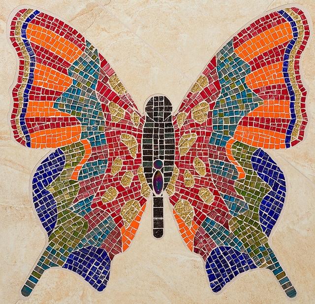 butterfly 4 by Julee Latimer, via Flickr