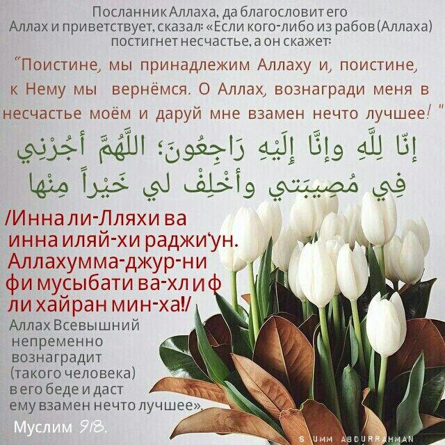 образ, которому картинки все мы от аллаха что