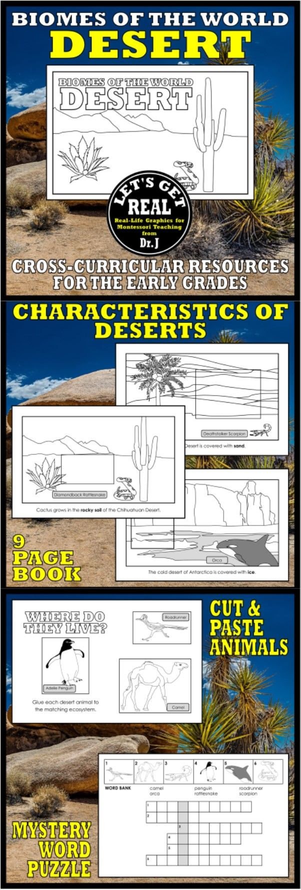 """Explore sandy, rocky, and icy deserts with this activity book featuring """"cut and paste"""" desert animals."""