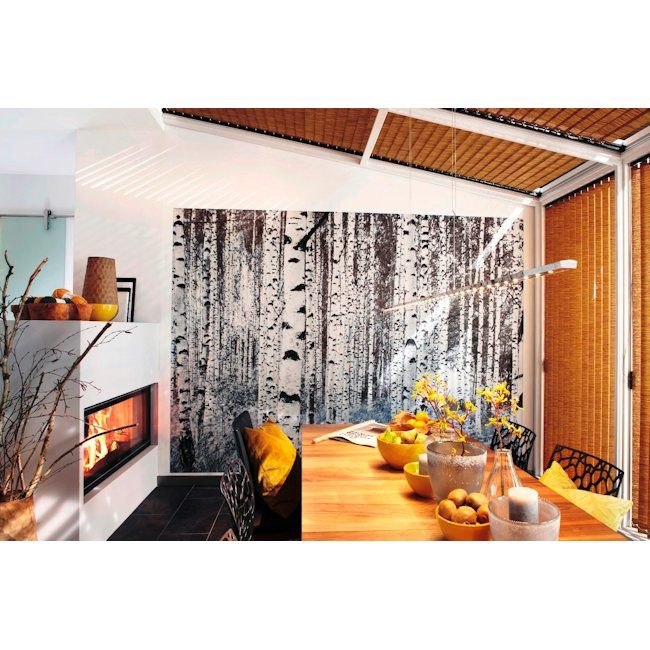 A black & white timeless look, Woods wall mural, 400cm wide x 2700cm high, from wallpapershop