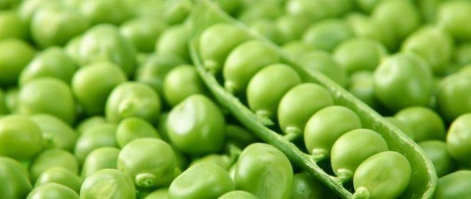 DOPERWTEN zijn erg gezond. Ze bevatten vezels, vitamine C, Kalium, ijzer, B- vitamines en foliumzuur. Bevroren doperwten zijn gezonder dan verse. Dit komt doordat de erwten na het oogsten, plukken en schillen binnen twee uur worden ingevroren. Hierdoor blijven voedingsstoffen bewaard. Erwten mogen niet rauw gegeten worden, omdat ze een giftige stof bevatten die door verhitten onschadelijk wordt. Erwten uit blik en diepvries zijn niet meer rauw.