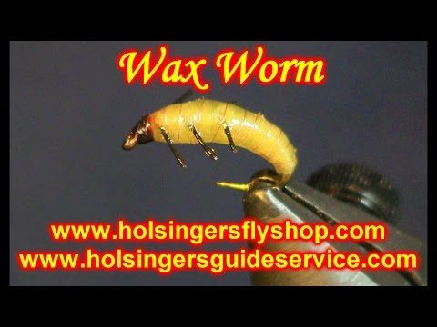 Wax Worm, Holsinger's Fly Shop - YouTube
