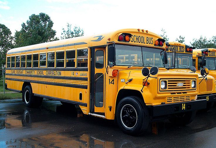 A Chevy Bluebird School Bus From The 1980's Vintage