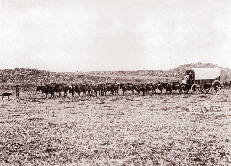 Dorsland Trekkers crossing the plains
