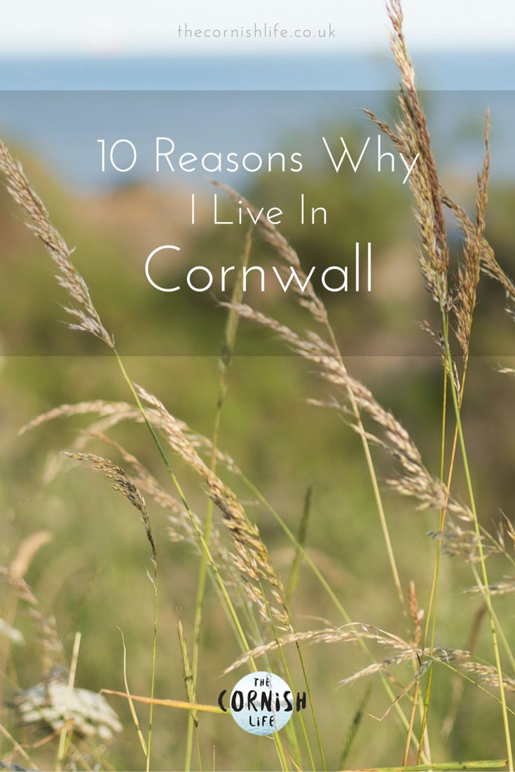 10 Reasons Why I Live in Cornwall   The Cornish Life