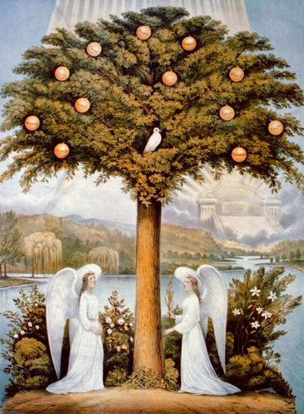 """The Tree of Life. BIBLE SCRIPTURE: Genesis 3:24, """"So he drove out the man; and he placed at the east of the garden of Eden Cherubims, and a flaming sword which turned every way, to keep the way of the tree of life."""""""