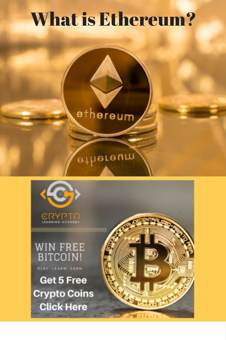 what is cryptocurrency wallet