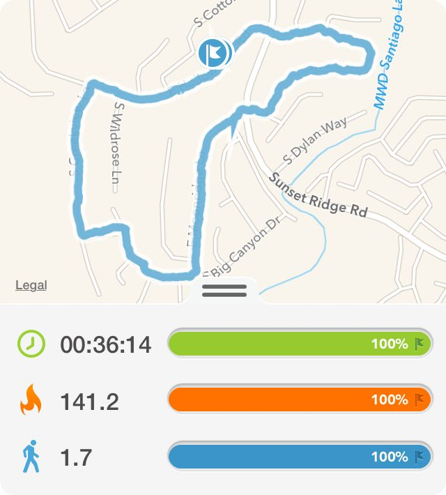 I just walked for 36 minutes, 1.7 mile and burned 141 ...