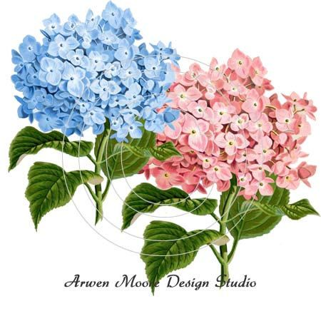 Beautiful Vintage Chic Shabby Blue and Pink by ArwenMooreDesigns, $9.99