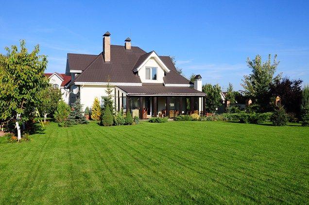 Large Backyard Lawn  Backyard Landscaping  Landscaping Network  Calimesa, CA