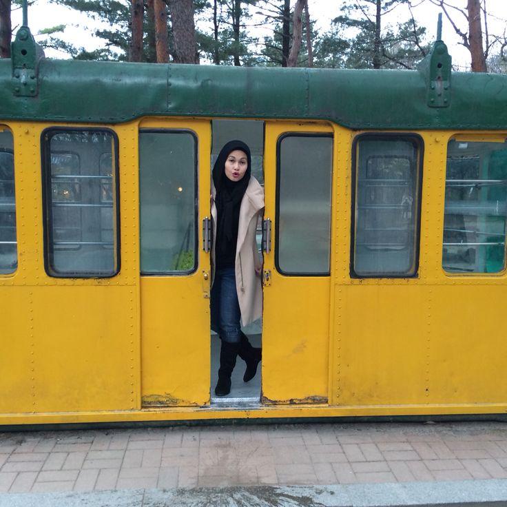 Cable car @mt. Seorak