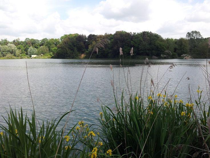 Nazzano Tevere-Farfa: una Riserva Naturale da visitare