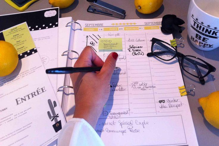 agenda 2015-2016 -Planner free - Free organizer - Free printable Organiseur