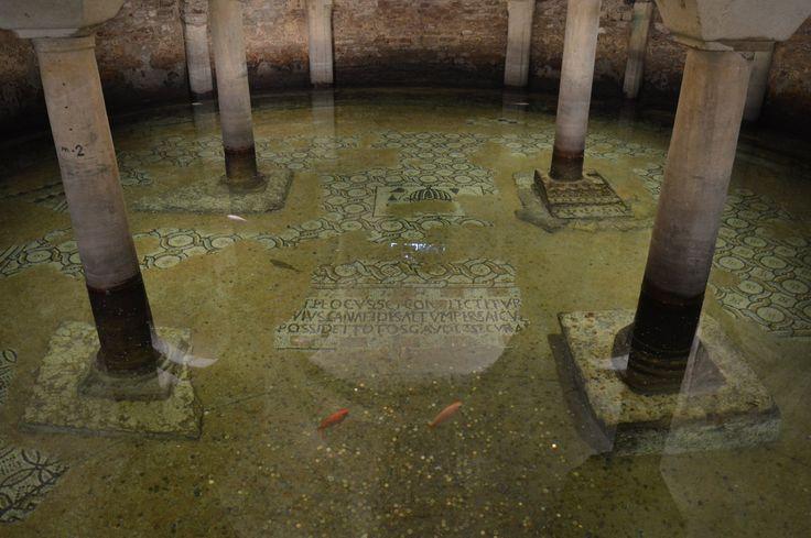 Basilica di San Francesco (underwater crypt with floor mosaics) - Ravenna
