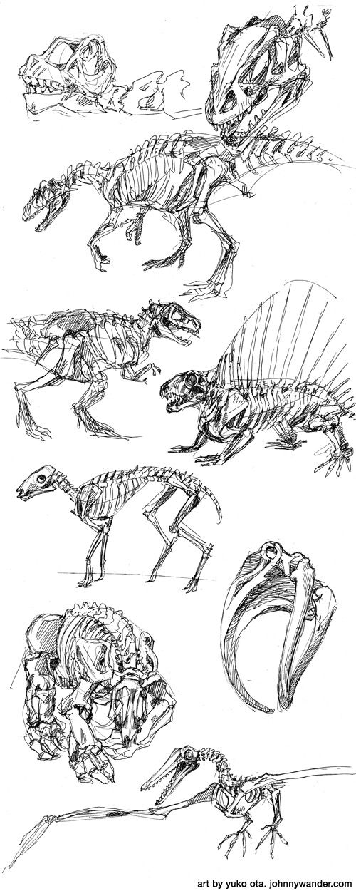 dinosaur drawings | dinosaur gesture drawings forever | Johnny Wander | Updates Tuesday ...
