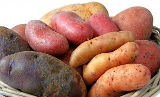 Kartoffeln – Basisch, gesund und heilsam