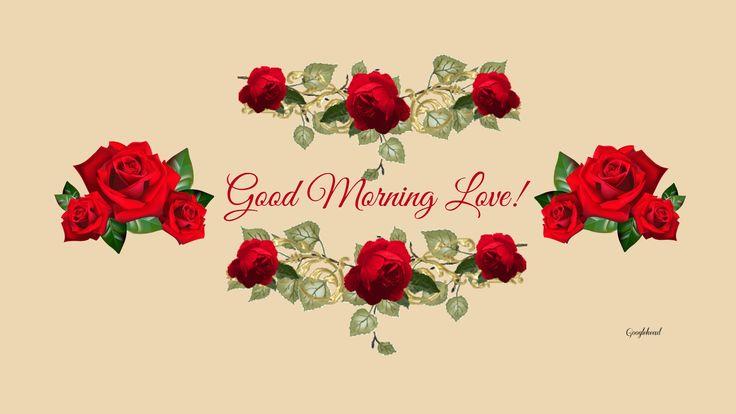 Guten Morgen liebe, blumen, karten Hintergrundbilder