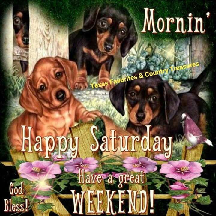 Happy Saturday, Have A Great Weekend  good morning saturday saturday quotes good morning quotes happy saturday saturday quote happy saturday quotes quotes for saturday good morning saturday beautiful saturday quotes saturday quotes for family and friends