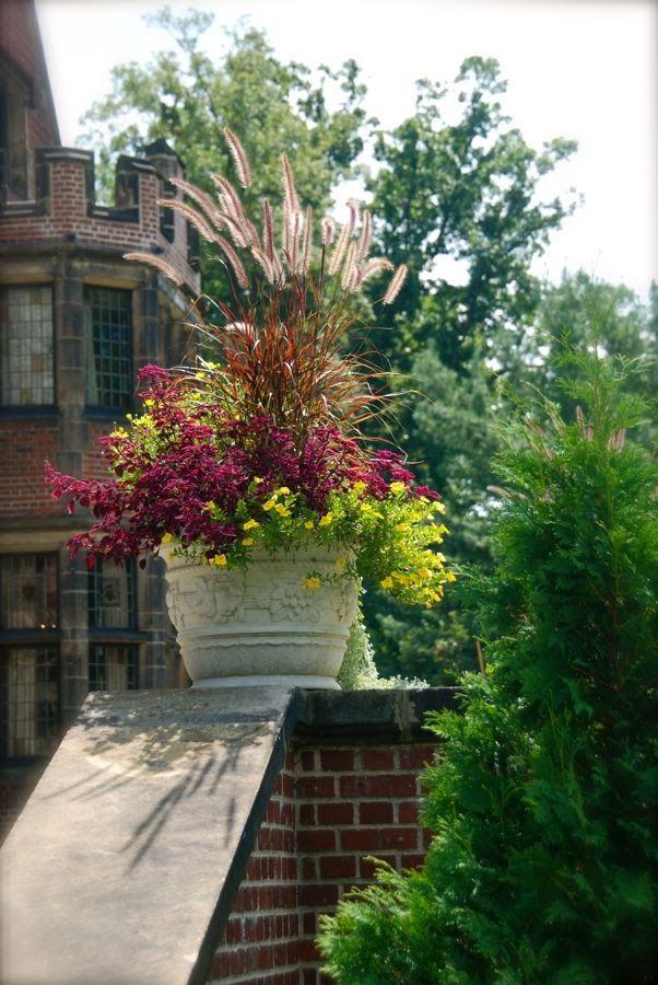 Best Garden Images On Pinterest Landscaping Garden Ideas