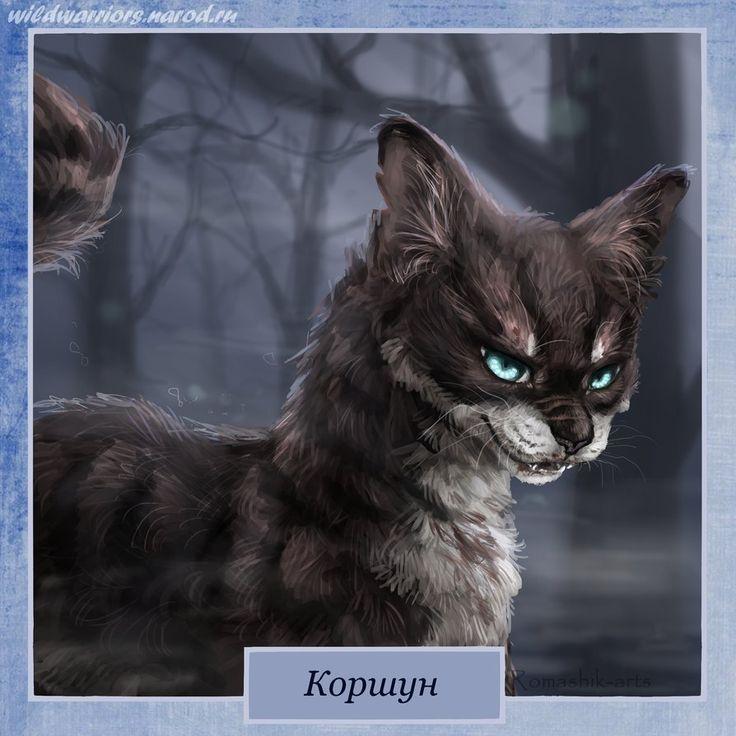 Коты воители коршун картинки