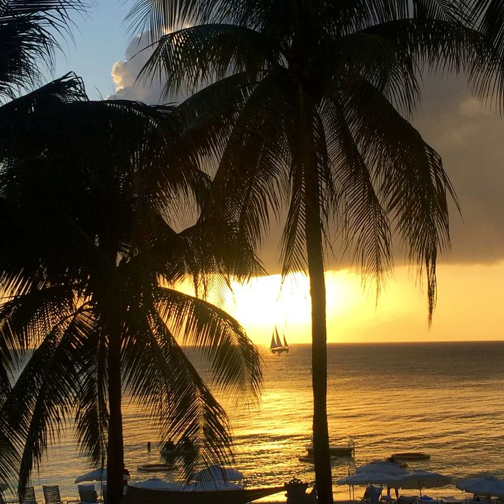 Idyllic sunset. Grand Cayman May 2016.