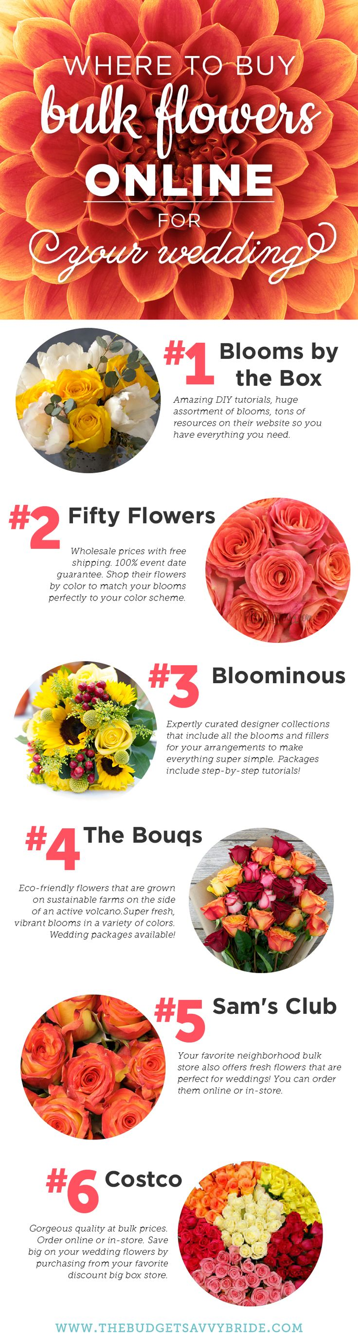Thinking of DIYing your wedding flowers? Be sure to check out these online resources for bulk flowers!