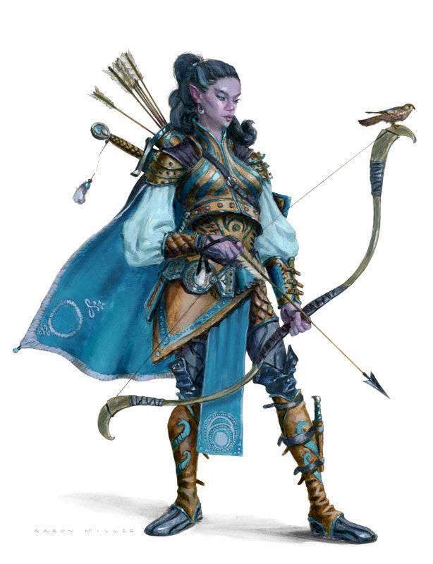 Half-elf (Moon)/Ranger (from the 5e Dungeons & Dragons Player's Handbook). Art by Aaron Miller.