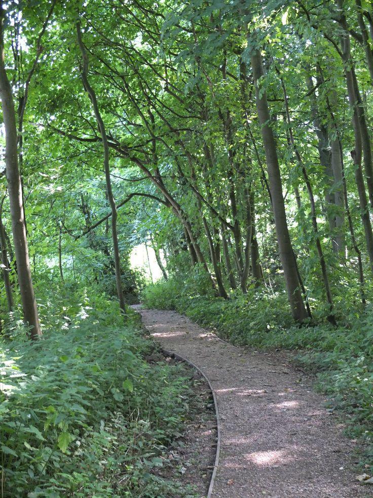 Walking - Whitlingham Broad