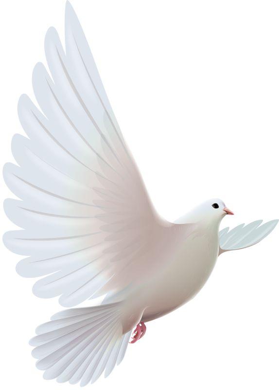 pentecost symbols dove