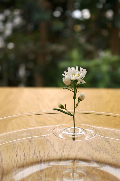 oodesign Floating Vase RIPPLE