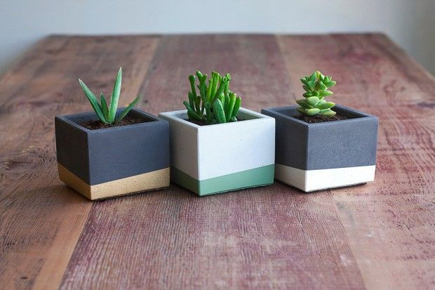 Three Small Color Block Concrete Planter Set Design