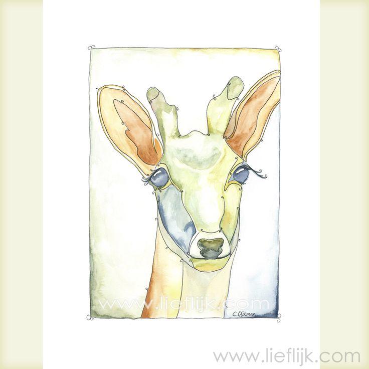 Poster Aquarel Hert -- een print van het originele aquarel. Een afbeelding van een hert waar je heerlijk bij weg kunt dromen. Deze poster is een mooi cadeau voor jezelf of voor een ander. Je kunt de poster zo ophangen, of inlijsten. -- Details: Afbeelding: ca.28 cm x 20 cm Papier: 29,7cm x 21 cm (A4 formaat) Papierdikte: 250gr, mat Het watermerk wordt vanzelfsprekend niet afgedrukt! www.lieflijk.com